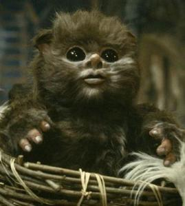 This little hoodlum has already swiped your wallet and keyed your landspeeder.